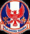 1st Air Commando Squadron