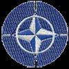 North Atlantic Treaty Organization (NATO)