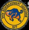 99th Bombardment Squadron, Medium